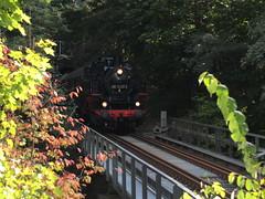 Erzgebirgische Aussichtsbahn September 2018 (littleRedDaemon) Tags: annabergbuchholz eab eisenbahn erzgebirge eisen eisenbahnromantik dampflokomotive dampflok tunnel