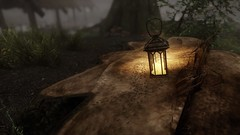 Ants (drosera bergen) Tags: ants skyrim insects tesv screenshot videogame lantern tree wood light