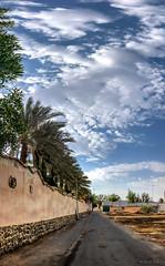20180823-GIEZ5937 (Tai Le in KSA) Tags: jeddah makkahprovince saudiarabia sa