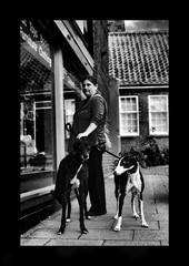 gritty grayhounds (Mallybee) Tags: m43 panasonic lumix stphotographia greyhound dog greyhounds dcg9 g9 pentacon 24mm f28 primelens mallybee bw blackwhite