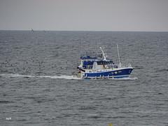 retour de pêche (mchub) Tags: bateau chalutier laturballe paysdelaloire hx400v mer sardine loireatlantique