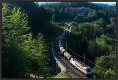 "Looking for Strojvedouci ("" Wiener Schule "") Tags: öbb oebb obb semmering ghega austria wolfsbergkogel semmeringbahn kartnerkogelviadukt eisenbahn railway railroad 183719 awt"