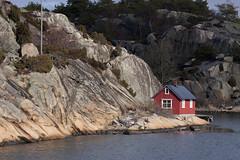 Hvalerkysten 1.6, Østfold, Norway (Knut-Arve Simonsen) Tags: hvaler norge норвегия norway noruega norwegen norvegia norvège नॉर्वे 挪威 ノルウェー நோர்வே νορβηγία sydnorge sørnorge østlandet glomma oslofjorden østfold norden scandinavia скандинавия э́стфолл фре́дрикстад гло́мма ослофьорд vann hav benk gress tre hytte brygge water sea tree cottage pier banco de mar agua hierba árbol cabaña muelle wasser meer hütte acqua molo mare papper
