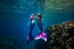 Honaunau 3 (joshsx) Tags: 1018mm canon underwater mermaid mermaids 80d