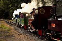 Contre Jour (1) (Neil Harvey 156) Tags: steam steamloco steamengine steamrailway railway countlouis claytonwest kirkleeslightrailway steamgala2018 miniaturerailway fairbournerailway class30atlantic bassetlowke stegwin monty anne exmoorlightrailway