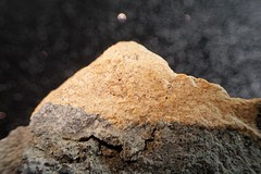 MM - Rock -  HMM! (Christa_P) Tags: macromondays macro hmm rock stein