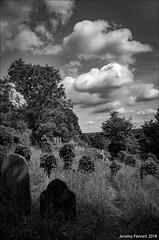 Arnos Vale Cemetery in September (zolaczakl) Tags: bristol bristolinmonochrome blackandwhitebristol blackandwhite bw arnosvalecemetery brislington clouds trees gravestones graveyard grave tomb lightshadow nikond800 nikonafsnikkor24120mmf4gedvrlens jeremyfennellphotography photographybyjeremyfennell uk england