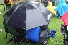 umbrellas 5 c