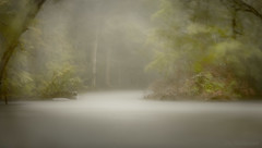 In the Midst of the Howling Storm (JDS Fine Art Photography) Tags: storm stormy wind windy rain nature lake forest woods inspirational atmosphere beauty naturesbeauty haunting supernatural longexposure neutraldensityfilter