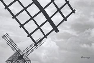 Aspas_Geometría en el cielo
