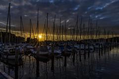 Travemünde (hph46) Tags: deutschland germany priwall marina sailingboats segelboote sunset clouds reflektionen sony alpha6500 canonef1635mm14lisusm travemünde