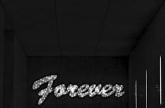 #WOW! (christikren) Tags: austria art blackwhite bw christikren design exhibition kunst kunstmuseum leopoldmuseum museum monochrome noiretblanc vienna wien austellung ende forever wow contrast sign label