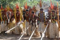 Festival Katukina - Julho de 2018 (lapidim) Tags: katukina rape acre amazonia festival indigena pano cruzeirodosul dance dança tribe indigenous