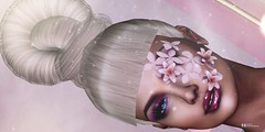 ZIBSKA-JUMO: Dios no te hubiera dado la capacidad de soñar sin darte también la posibilidad de convertir tus sueños en realidad. Héctor Tassinari (pattybartavelle) Tags: sl secondlife virtual irreal woman girl sensual seductive maitreya catwa zibska jumo face closeup flower hair makeup