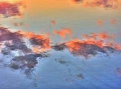 Reflected glory (elphweb) Tags: hdr highdynamicrange nsw australia coast coastal water reflections seaside