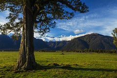 Middle Earth (Matt Champlin) Tags: lotr lordoftherings middleearth amazing beautiful funny incredible life nature landscape mountains gondor peace peaceful quiet calm calming travel camping hiking lakematheson mtcook mttasman awesome