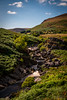 "Elan Valley • <a style=""font-size:0.8em;"" href=""http://www.flickr.com/photos/23125051@N04/43692057235/"" target=""_blank"">View on Flickr</a>"
