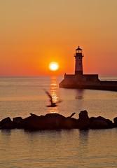 Seagull Photobomb! (f/ames) Tags: lighthouse seagull photobomb lakesuperior minnesota duluth funny sunrise water canon5d mkii