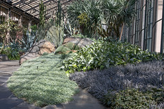 Longwood Gardens (Tom Ipri) Tags: longwoodgardens plants canoneos5dmarkiv