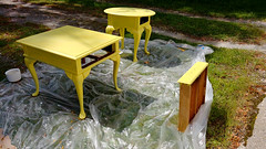 6. Apply paint with foam roller, fill in nooks/crannies with a paintbrush. (osiristhe) Tags: cellphone painting furniture decor