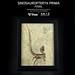 Sinosauropteryx  (Fossil Decoration Frame)