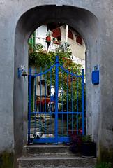 il cancello blu / the blue gate (frank28883) Tags: cancello portale cane entrata