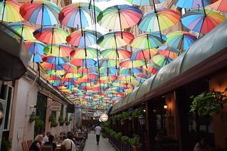 Calle con paraguas (Bucarest, Rumanía, 22-8-2018)