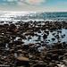 180917_Kangaroo_Island_7872.jpg
