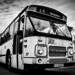 46 - Oproepbus