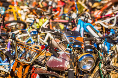 How Could You Leave Me All Alone on This Earth? (Thomas Hawk) Tags: allbikesales america arizona honda phoenix rye usa unitedstates unitedstatesofamerica bicycle bicyclejunkyard bike bikejunkyard junkyard motorcycle motorcyclejunkyard payson us fav10 fav25 fav50 fav100