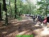 """2018-09-19                  Amerongen     23 Km (66) • <a style=""""font-size:0.8em;"""" href=""""http://www.flickr.com/photos/118469228@N03/44087418514/"""" target=""""_blank"""">View on Flickr</a>"""