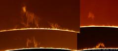protuberancias solares 20/08/2018 (Jordi Sesé) Tags: sun solar prominences pstmod asi174mm
