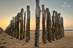 Post and post again on the Sillon's Beach in Saint-Malo (Sylvie Nenan) Tags: bretagne brittany france pays beach plage sunset post poteaux