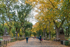 Trip to NYC - October 2017 (db | photographer) Tags: 2017 adobelightroom57 amerique ameriquedunord arbres automne autumn banc bancs bench benches bottura botturadamien centralpark d80 damienbottura discovertheworld etatsunis etatsunisdamerique exploretheworld feuilles flickrtravelaward green jaune leaves manhattan nature newyork newyorkcity nikond80 northamerica ny nyc october2017 octobre2017 orange parc park people personnes persons statues street streetphoto streetphotography streetshot tamron1750mm tamronspaf1750mmf28xrdi travel traveltoamerica traveltonewyork traveltonyc trees triptonewyork triptonewyorkcity triptony triptonyc unitedstates unitedstatesofamerica vert voyage voyageanewyork yellow
