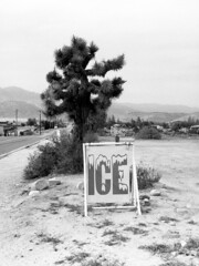 You Know You're in the California Desert When . . . (squirtiesdad) Tags: joshua tree roadside sign ice mountains high desert hesperia bwfp diyfilmscanning selfdeveloped kodak duex epson v600 blackandwhite bw monochrome analogue analog aristaedu arista iso100 120 film 620