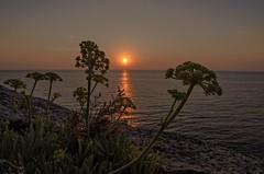 A new day .... (Marco_964) Tags: alba dawn mare sea seascape panorama landscape sun sole pentax pentaxk50 reflex wide puglia salento sunrise sky