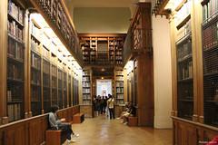 Palais Garnier, Paris : la bibliothèque-musée (philippeguillot21) Tags: opéra palais garnier theatre bibliothèque livre paris france europe pixelistes canon