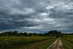 Fontanabona (paolo-p) Tags: nuvole clouds fontanabona pagnacco linee lines