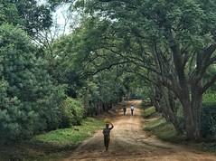 Backroads of Moshi