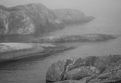 IMG_0626 (www.ilkkajukarainen.fi) Tags: helsinki archipelago saaristo söderskär summer kesä kalliot rocks porvoo kivet sea meri water vettä blackandwhite mustavalkoinen monochrome
