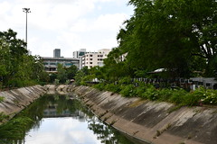 The canal... (PP_1026) Tags: nikon d7500 hatyai thailand songkhla nature canal