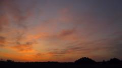 Dawn. (ALEKSANDR RYBAK) Tags: рассвет утро рано небо облака природа деревья пейзаж осень погода сезон солнечный свет лучи dawn morning early sky clouds nature trees landscape autumn weather season solar shine beams