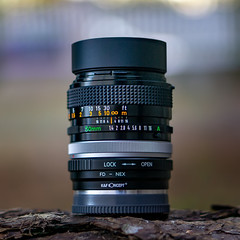 Vintage manual Canon FD 50mm ƒ/1.4 S.S.C. (.: mike | MKvip Beauty :.) Tags: canonfd50mmƒ14ssc canonfd canon fd ssc sony⍺6000 sonyilce6000 sonyalpha6000 ⍺6000 ilce6000 sonye50mmƒ18oss sel50f18 lensporn cameraporn gearshot availablelight naturallight backlight backlighting wörthamrhein germany europe mth mkvip