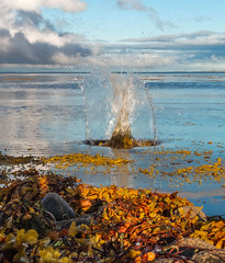 Rock Splash (rattigan_tim) Tags: scotland dornoch bridge firth rock splash