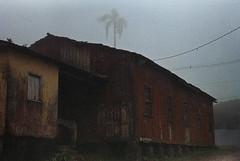 .silently. (Camila Guerreiro) Tags: film pentaxmesuper agfa agr400 expiredfilm paranapiacaba camilaguerreiro brazil analog grain fog