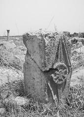 2018/07/09 12h56 ruines de Volubilis (Valéry Hugotte) Tags: 24105 maroc volubilis canon canon5d canon5dmarkiv noiretblanc romain ruines sculpture antiquité stèle