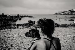 Different Directions (mripp) Tags: art vintage retro old mono monochrom beach dogs dog animal hunde sony alpha 7rii voigtlander nokton 40mm f12 bokeh bokehilicious