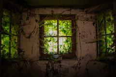 Château des gendarmettes (Fla(v)ie) Tags: abandoned abandonedcastle abandonné châteauabandonné château castle urbex chateaudesgendarmettes chateaudeslions window brokenwindow fenetre fenêtrecassée