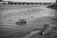 harbinger of consumerist doom (fallsroad) Tags: riverwestfestivalpark arkansasriver tulsaoklahoma river water blackandwhite bw monochrome bridge shoppingcarts