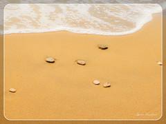 Χρυσή αμμουδιά, βότσαλα και αφρισμένο κύμα (Spiros Tsoukias) Tags: hellas corfu chlomos korission κέρκυρα χλωμόσ κορισσίων ίσσοσ χαλικούνασ issos chalikounas αμμουδιά βότσαλα θάλασσα ελλάδα λίμνεσ καλοκαίρι διακοπέσ φύση ηλιοβασίλεμα ανατολήηλίου σύννεφα ουρανόσ greece lakes summer holidays nature sunset sunrise clouds sky grecia laghi estate vacanze natura tramonto alba nuvole cielo grece lacs ete vacances coucherdesoleil leverdesoleil nuages ciel griechenland seen sommer ferien natur sonnenuntergang sonnenaufgang wolken himmel sea beach water